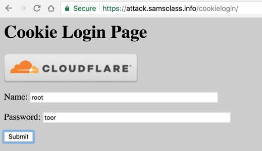 Proj 11x: Stealing Cookies with XSS (10 pts )
